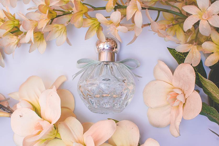 Perfumes amaderados: el bosque en tu piel